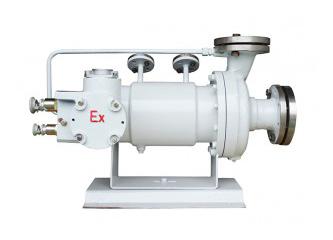 B型基本型屏蔽泵